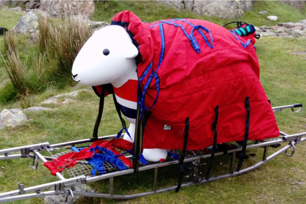 Herdy on Rescue Training